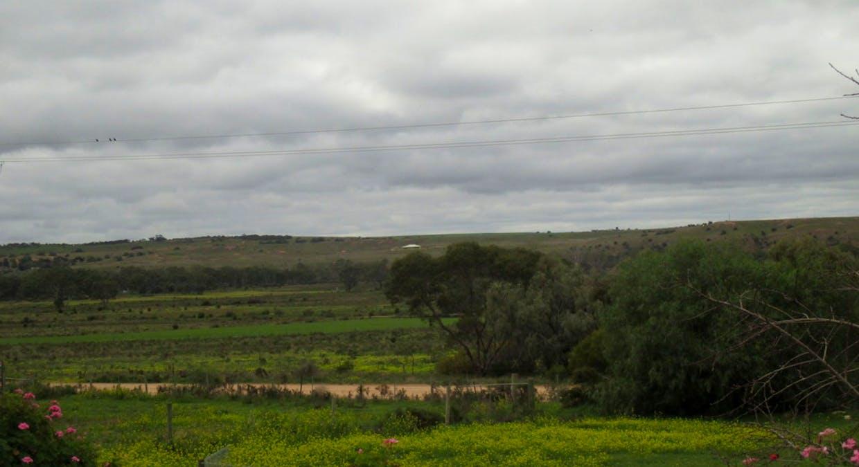 135 Martin Road, Wall Flat, SA, 5254 - Image 11