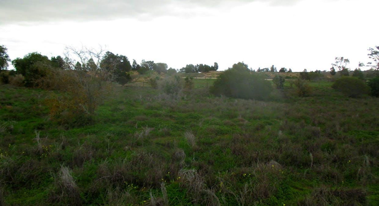 Lots 896-904 Pangarinda Road, Wellington East, SA, 5259 - Image 6