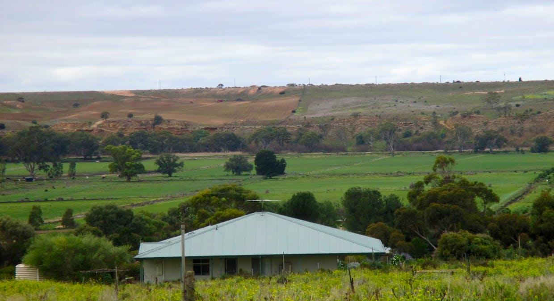 135 Martin Road, Wall Flat, SA, 5254 - Image 3