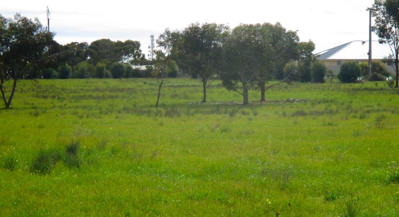 36 Magpie Drive, Tailem Bend, SA, 5260 - Image 4