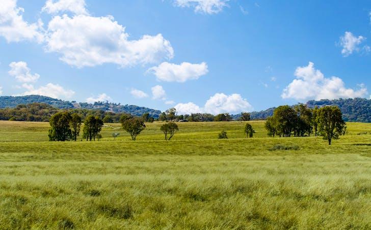 2826 Kingstown Road, Uralla, NSW, 2358 - Image 1