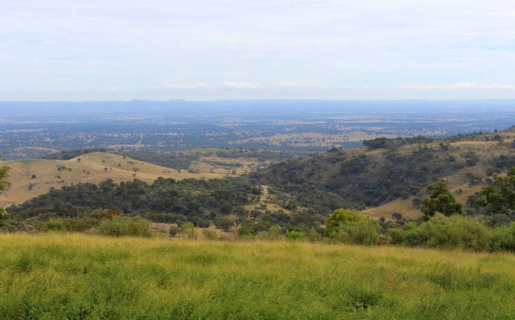 513 Johnsons Road, Yarrowyck, NSW, 2358 - Image 1