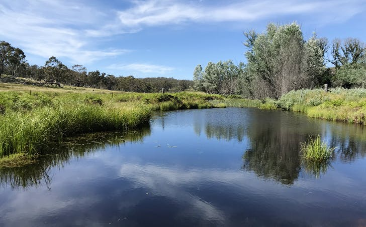 1415 Junction Road, Guyra, NSW, 2365 - Image 1
