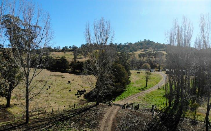 66 Homestead Road, Glencoe, NSW, 2365 - Image 1