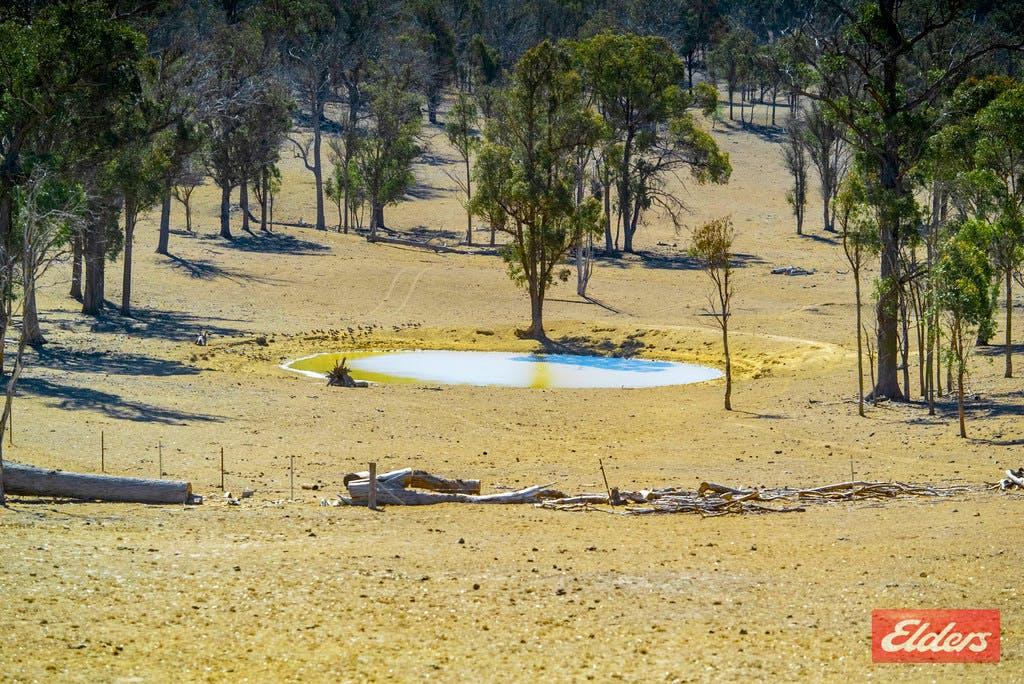 1435 Rockvale Road, Armidale, NSW, 2350 – For Sale | Elders