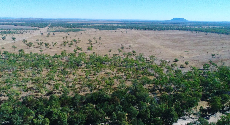 79 Airstrip Road, Nebo, QLD, 4742 - Image 4