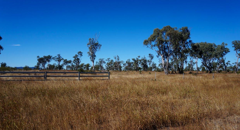 79 Airstrip Road, Nebo, QLD, 4742 - Image 39
