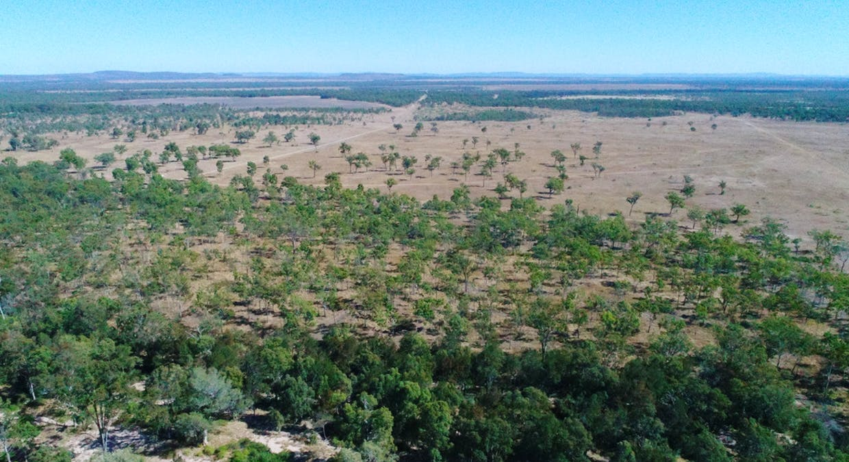 79 Airstrip Road, Nebo, QLD, 4742 - Image 5