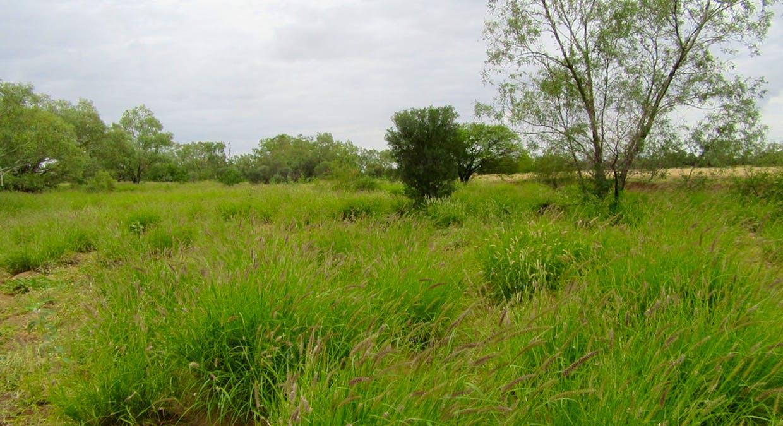 Winton, QLD, 4735 - Image 2