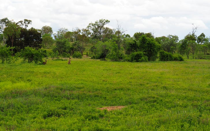 181 Cherryfield Rd, Gracemere, QLD, 4702 - Image 1