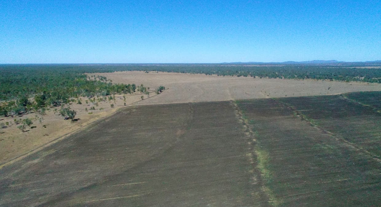 79 Airstrip Road, Nebo, QLD, 4742 - Image 8