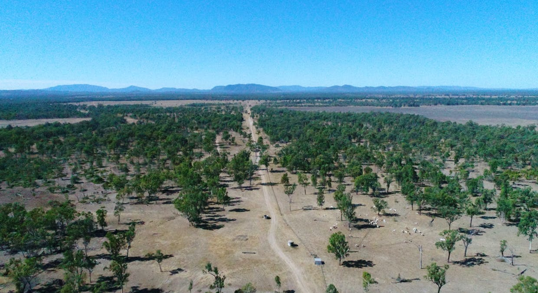 79 Airstrip Road, Nebo, QLD, 4742 - Image 1