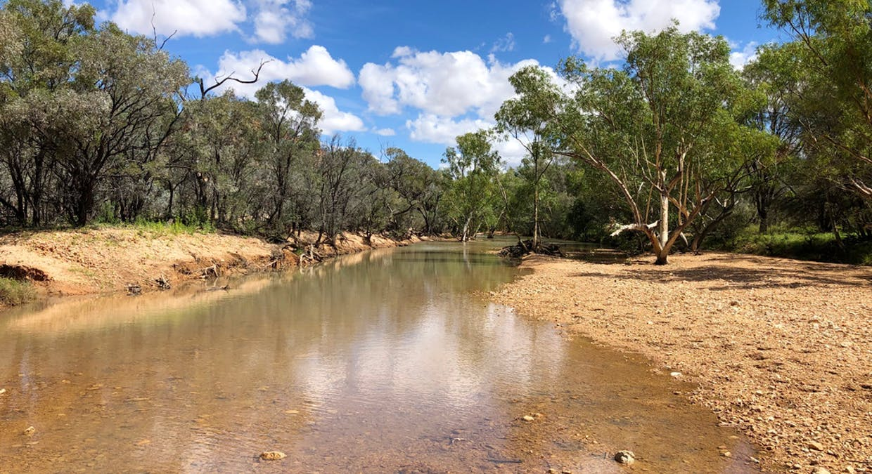Winton, QLD, 4735 - Image 23