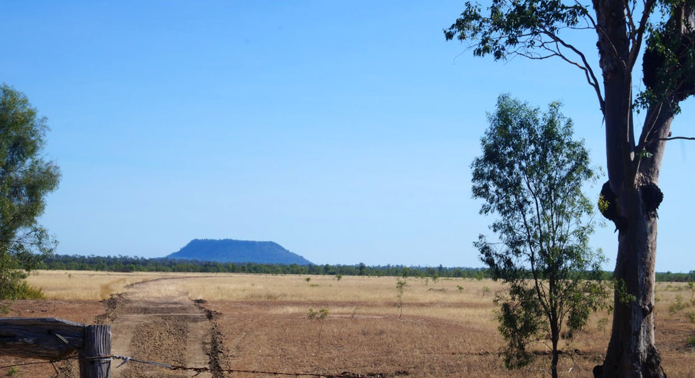 79 Airstrip Road, Nebo, QLD, 4742 - Image 10