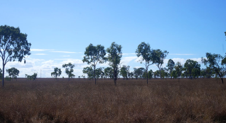 79 Airstrip Road, Nebo, QLD, 4742 - Image 22
