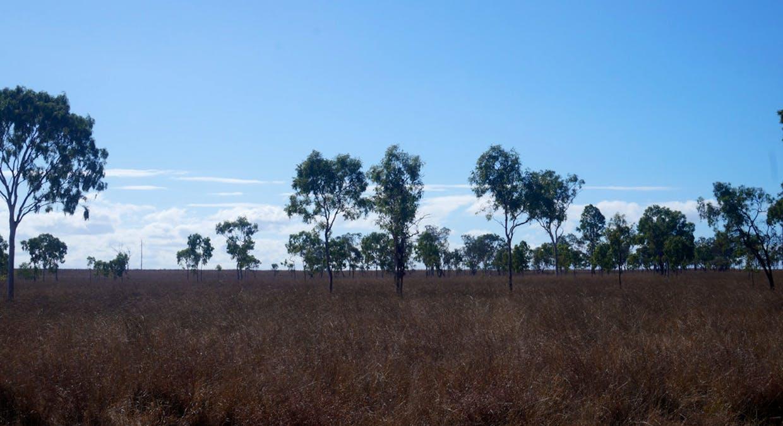 79 Airstrip Road, Nebo, QLD, 4742 - Image 47