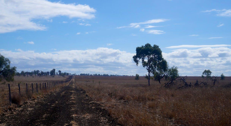 79 Airstrip Road, Nebo, QLD, 4742 - Image 23