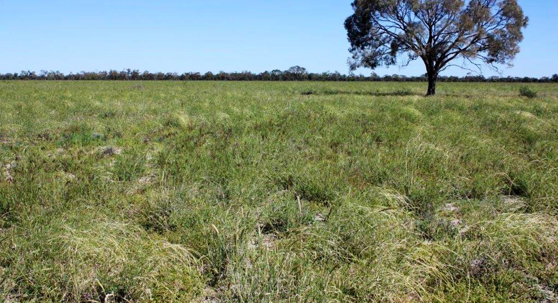 Blackall, QLD, 4472 - Image 3