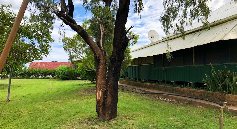 Winton, QLD, 4735 - Image 25