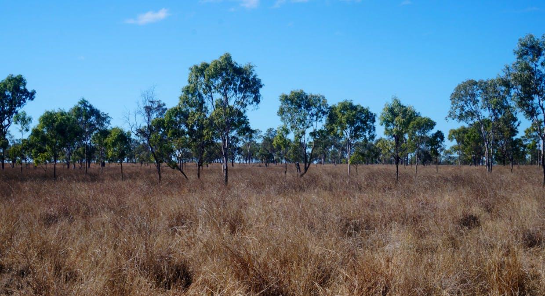 79 Airstrip Road, Nebo, QLD, 4742 - Image 49