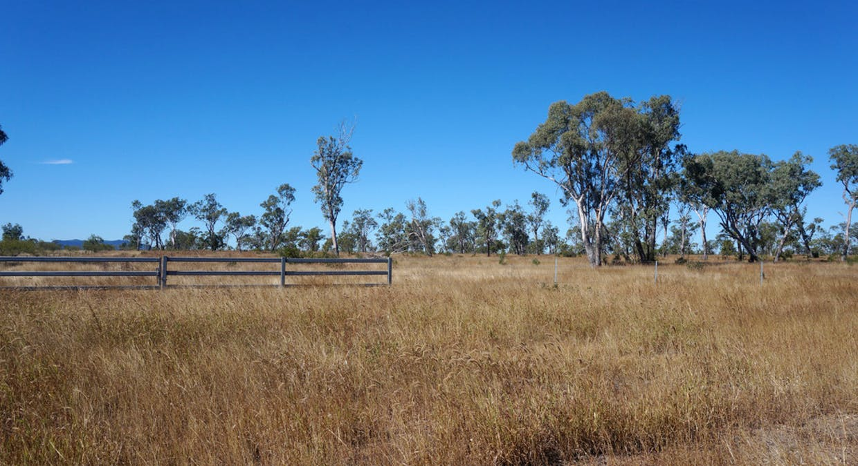 79 Airstrip Road, Nebo, QLD, 4742 - Image 18