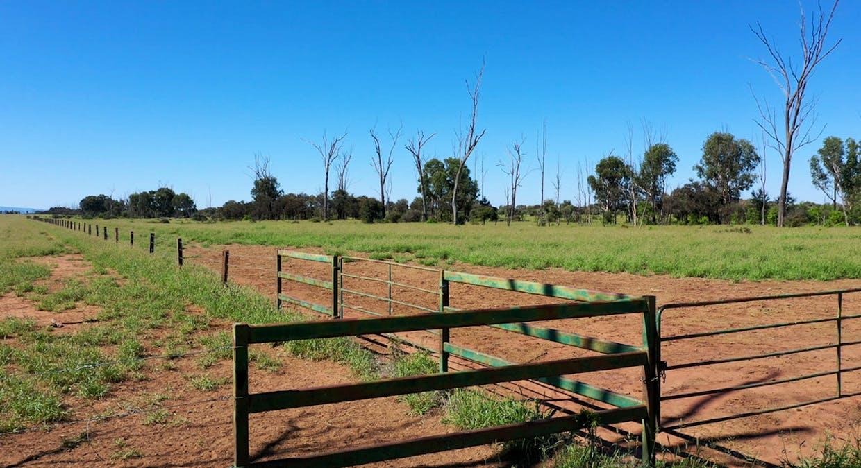 Blackwater, QLD, 4717 - Image 7