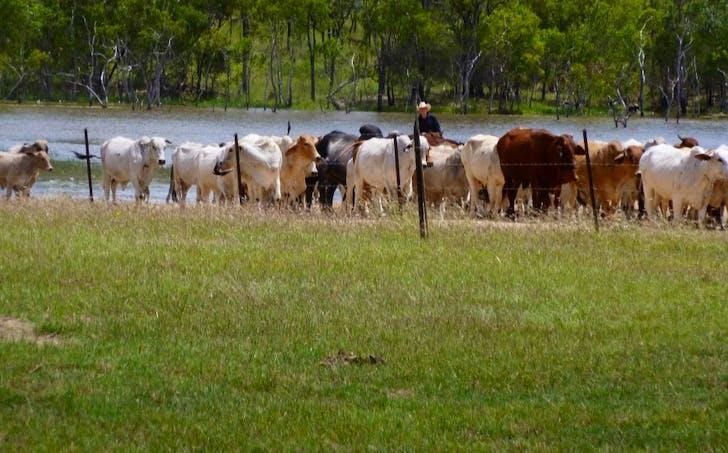 Herberton-Petford Road, Irvinebank, QLD, 4887 - Image 1