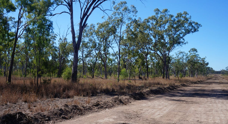 79 Airstrip Road, Nebo, QLD, 4742 - Image 24