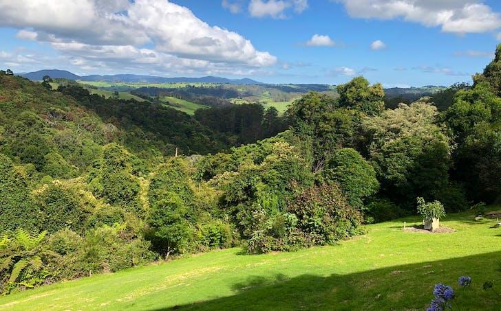 521 Muldiva Road, Dorrigo, NSW, 2453 - Image 1