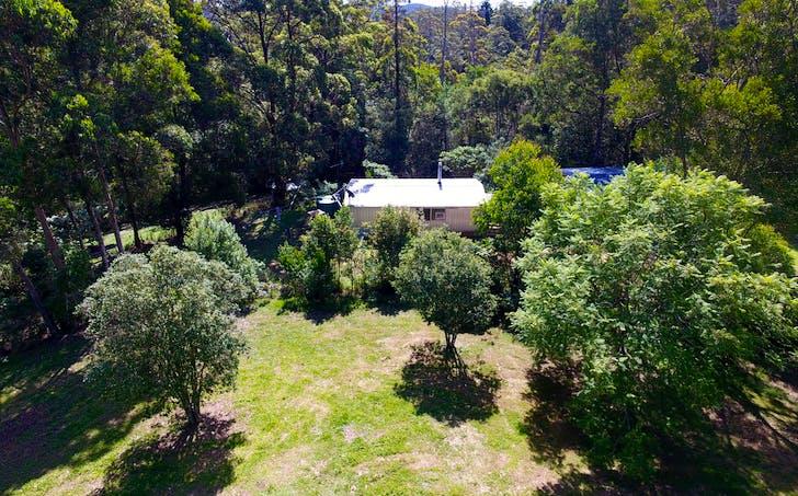 114 Wards Road, Dorrigo, NSW, 2453 - Image 1