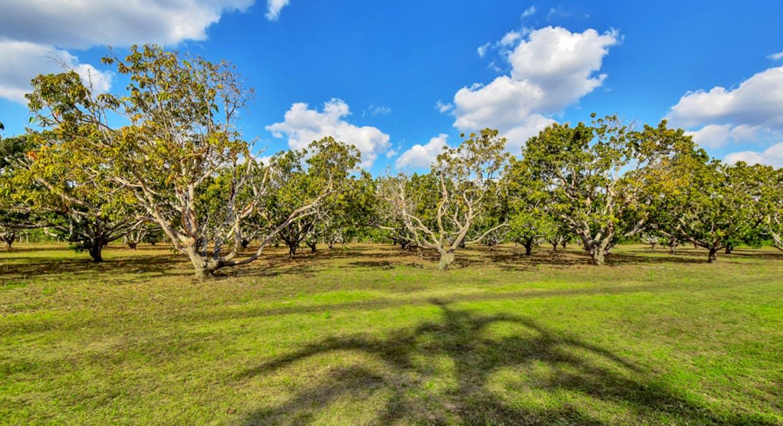 410C Elizabeth Valley Road, Noonamah, NT, 0837 - Image 29
