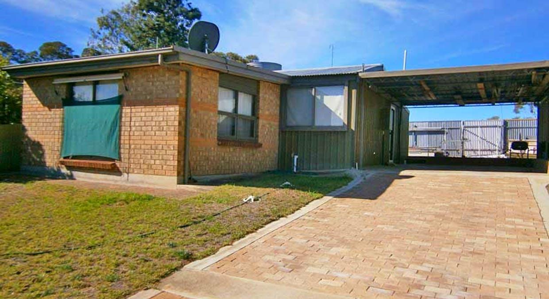Lot 338 Murbko Road, Morgan, SA, 5320 - Image 7