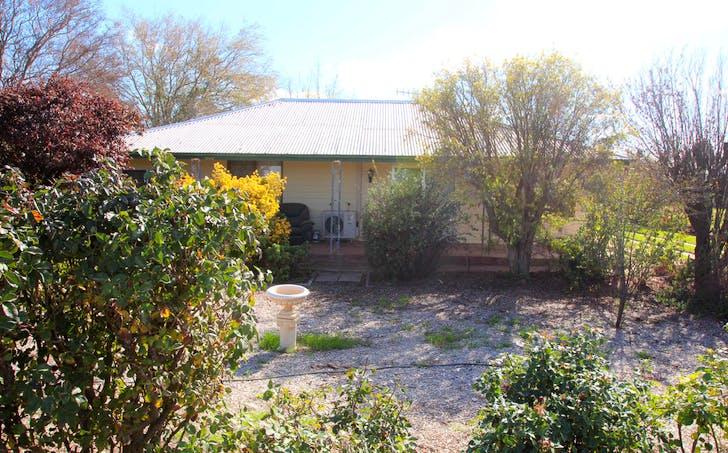 67 Goolwa Street, Renmark, SA, 5341 - Image 1