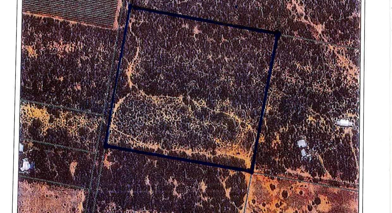 Section 544 O'callaghan Road, Monash, SA, 5342 - Image 2