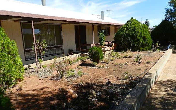 53 Gaskell Road, Barmera, SA, 5345 - Image 1