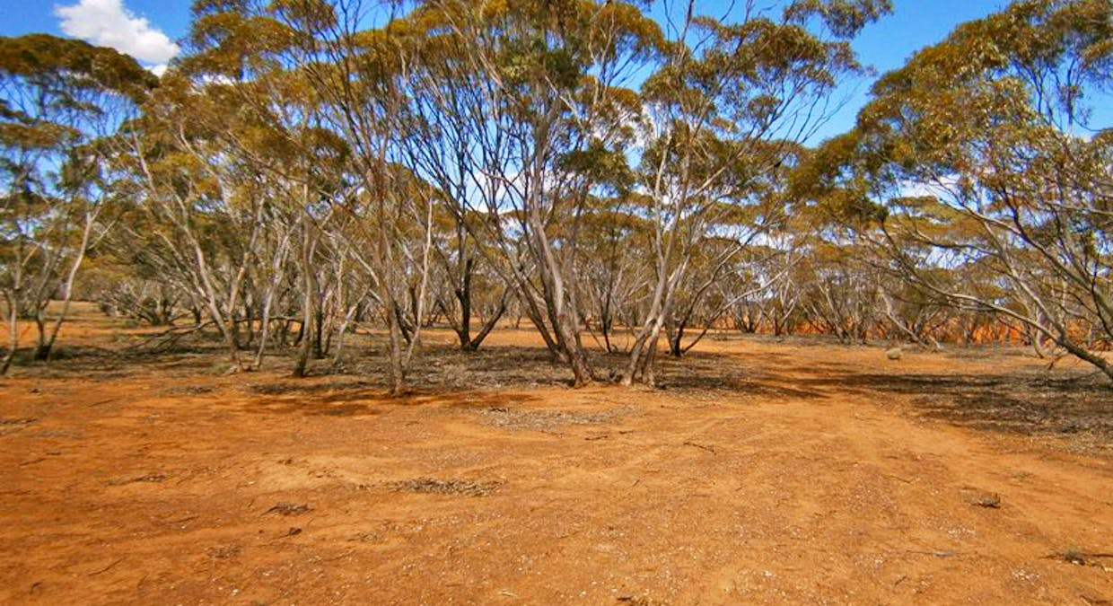 Lot 2 Angle Road, Sutherlands, SA, 5374 - Image 6