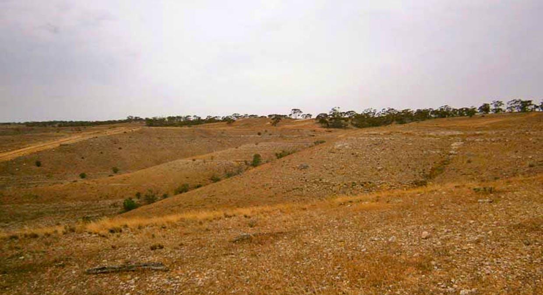 Lot 30 Kuchel Road, Waikerie, SA, 5330 - Image 4