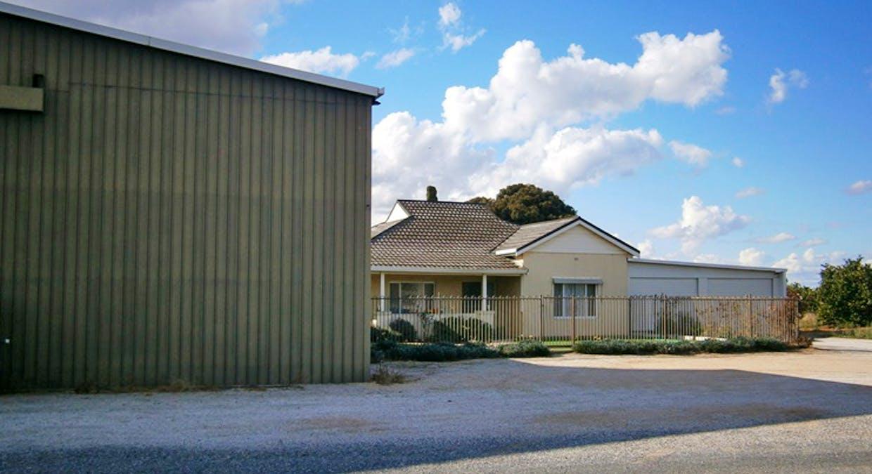 244 Ramco Road, Waikerie, SA, 5330 - Image 17