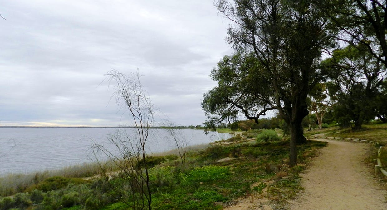 3/42 Queen Elizabeth Drive, Barmera, SA, 5345 - Image 25