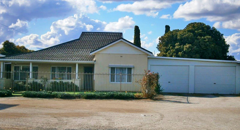 244 Ramco Road, Waikerie, SA, 5330 - Image 7