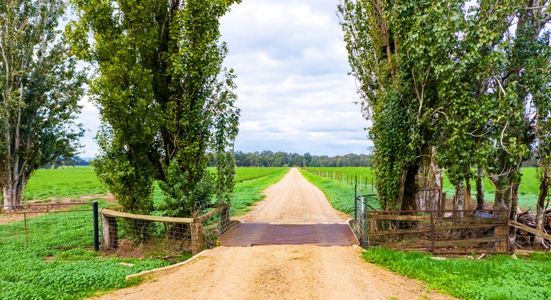 Aberfeldy Hume Highway, Holbrook, NSW, 2644 - Image 25