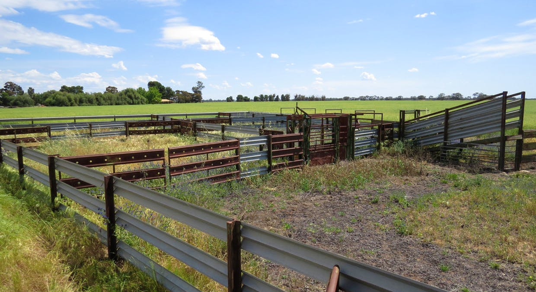 623 Logie Brae Road, Finley, NSW, 2713 - Image 8