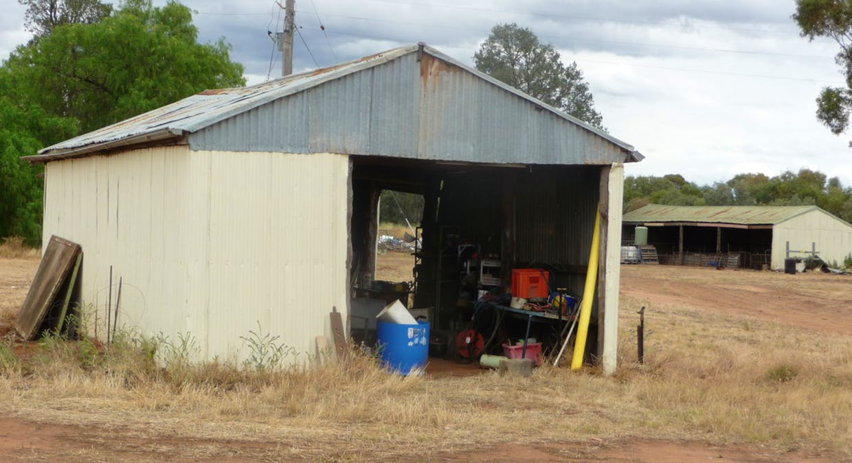 670 Lawlors Road, Finley, NSW, 2713 - Image 22
