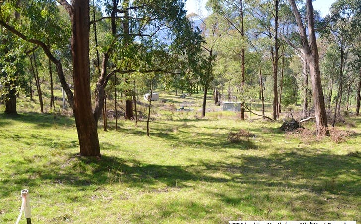 42 (Lot 1) Diggings Road, Tawonga, VIC, 3697 - Image 1