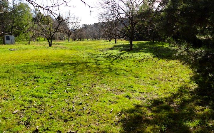 3237 Tallangatta Creek Rd, Tallangatta, VIC, 3700 - Image 1
