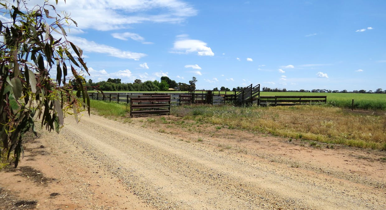 623 Logie Brae Road, Finley, NSW, 2713 - Image 10