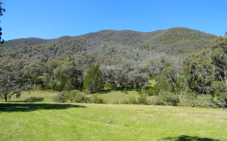 Stockyard Creek Track, Thologolong, VIC, 3691 - Image 1