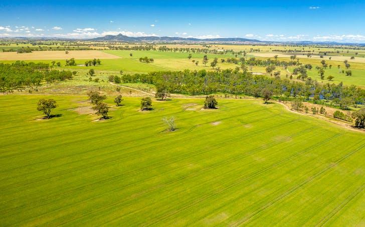 Milbrulong, NSW, 2656 - Image 1