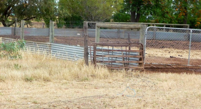 670 Lawlors Road, Finley, NSW, 2713 - Image 16