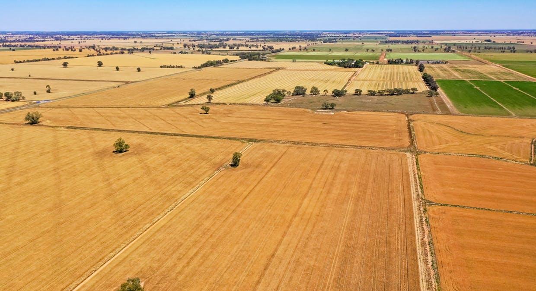 623 Logie Brae Road, Finley, NSW, 2713 - Image 3